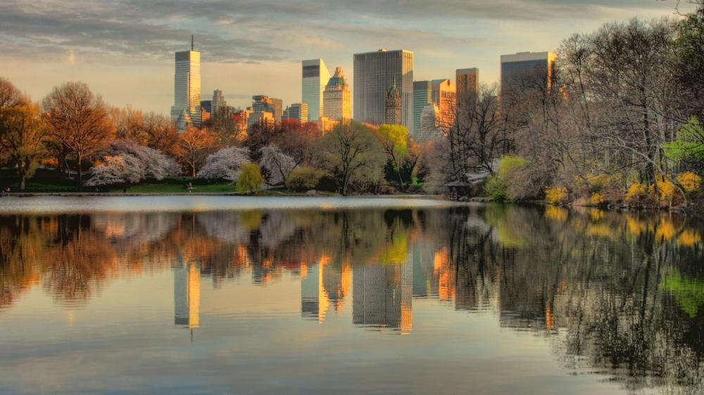 nature-landscapes-hdwallpaper-nyc-always-looks-best-from-central-park-hdr-new-york-wallpaper-trees-paintings-dark-mountains-beautiful-landscape-design-landscaping-wallpapers-free-images-photography-ne.jpg