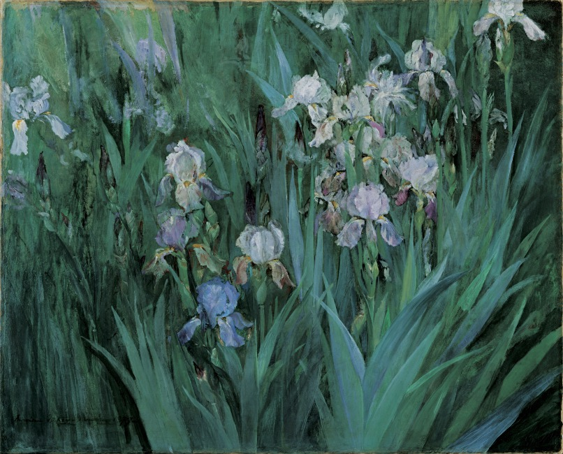Maria Oakey Dewing Iris at Dawn.jpg