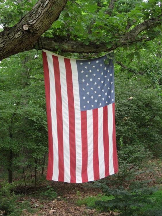 Our flag.jpg