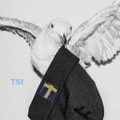 TSI, The Swedish Investor